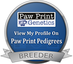 Breeder with Genetically Tested dogs